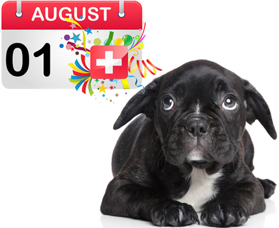 vorbereitung f r den 1 august mit hund. Black Bedroom Furniture Sets. Home Design Ideas