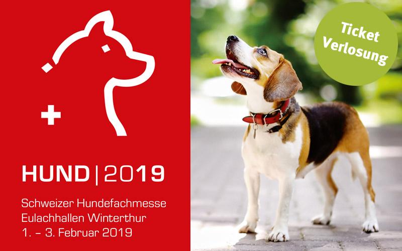 Hundemesse Winterthur - Hundetreffpunkt für Hundefreunde