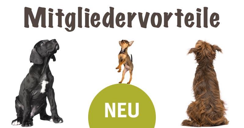 Mitgliedervorteile Hundeherz.ch