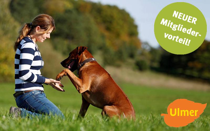 NEUER Mitgliedervorteil Ulmer Hundebücher