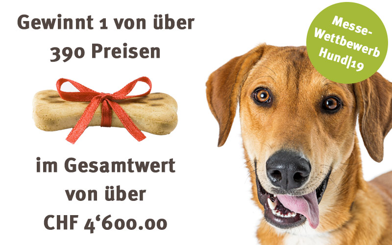 Wettbewerb Hundemesse Hundeherz.ch