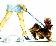 Patellaluxation beim Hund - Titelbild Fachbeitrag