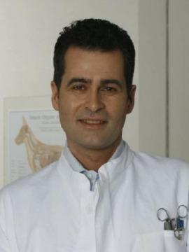 Daniel Klein Koch